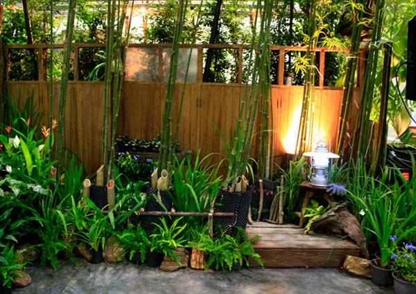 ใบไผ่เขียวชะอุ่มอยู่รอบบ้าน ผู้อยู่อาศัยร่มเย็นเป็นสุข