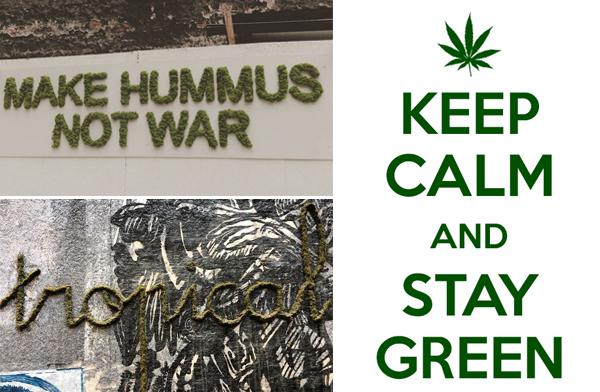 Keep Calm and Stay Green ได้เวลาสายเขียว มาแต่งกำแพงบ้านด้วย Moss Graffiti กันดีกว่า