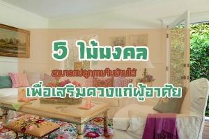 5 ไม้มงคลสามารถปลูกภายในบ้านได้ เพื่อเสริมดวงแก่ผู้อาศัย