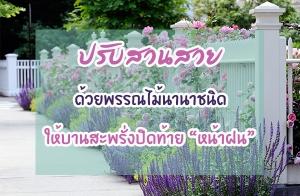 ปรับสวนสวยด้วยพรรณไม้นานาชนิด ให้บานสะพรั่งปิดท้ายหน้าฝน