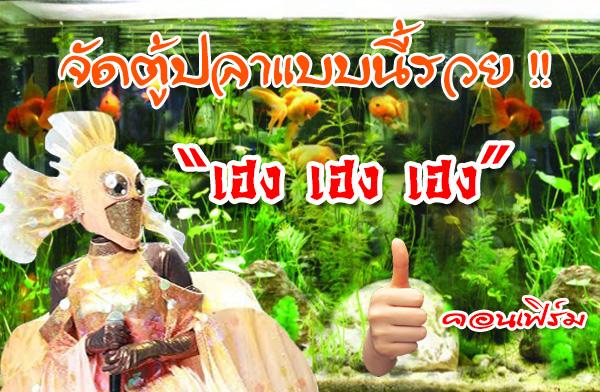 6 วิธีจัดตู้ปลาให้ถูกหลักฮวงจุ้ย รวย รวย รวย !!