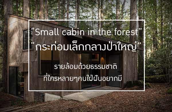 กระท่อมเล็กกลางป่าใหญ่ รายล้อมด้วยธรรมชาติ ที่ใครหลายๆคนใฝ่ฝันอยากมี