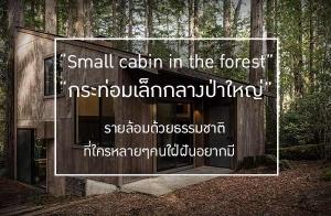 """""""กระท่อมเล็กกลางป่าใหญ่"""" รายล้อมด้วยธรรมชาติ ที่ใครหลายๆคนใฝ่ฝันอยากมี"""