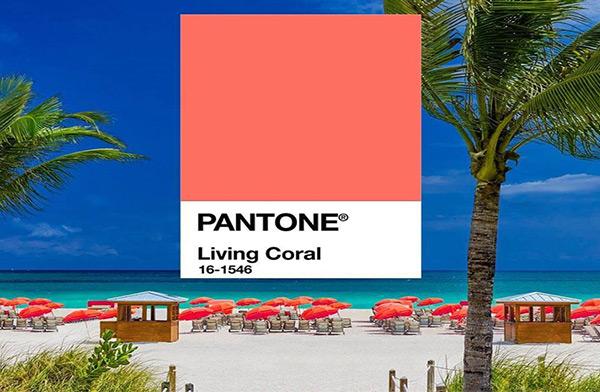 Living Coral 16-1546 สีประจำปี 2019