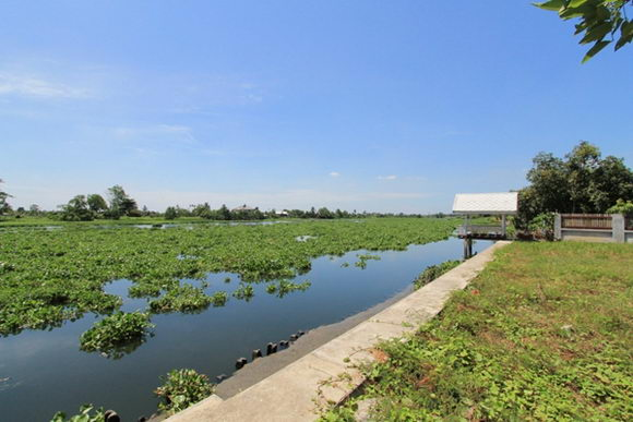 ปลูกบ้านย้อนยุคริมน้ำ กับความงดงามแบบไทย ๆ