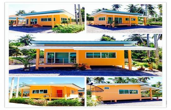 DDD House