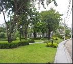 ขาย บ้าน เทศบาลนครนนทบุรี  ตารางวา