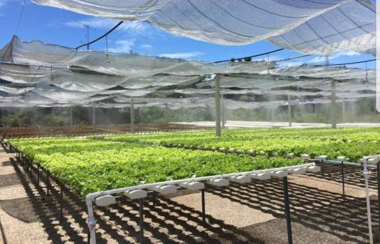 ขายที่ดิน 600000บาท ให้เช่า เซ้ง ที่ดินสวย5ไร่ พร้อม โรงปลูกผักไฮโดรโปรนิคทำเลดี กลางเมือง ใกล้บิ๊กซีราชบุรี ราคาเพียง 600,000 บาท