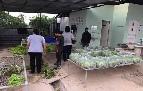 ขาย และให้เช่าที่ดิน เมืองราชบุรี ราชบุรี