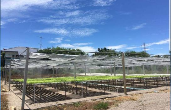 ให้เช่า เซ้ง ที่ดินสวย5ไร่ พร้อม โรงปลูกผักไฮโดรโปรนิคทำเลดี กลางเมือง ใกล้บิ๊กซีราชบุรี ราคาเพียง 600,000 บาท