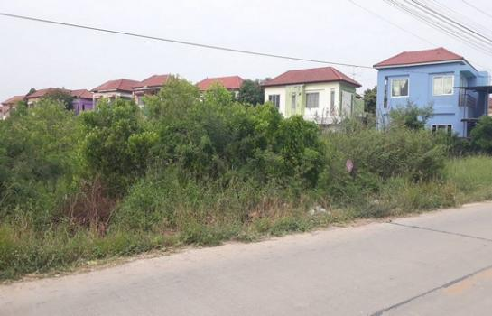 ขายที่ดิน 6 ไร่ คลองหลวง คลอง 3 ซอย หมู่บ้าน The money ใกล้ โรงเรียนสวนกุหลาบ
