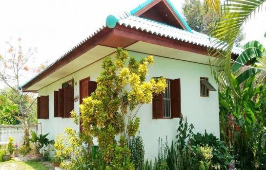 บ้าน ให้เช่า ให้เช่าบ้านหางดง เดือนละ 5,000 บาท ประกัน 2 เดือนล่วงหน้า 1 เดือนเข้าอยู่ได้เลย
